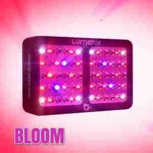 lampe lumeny 600w culture interieur bloom